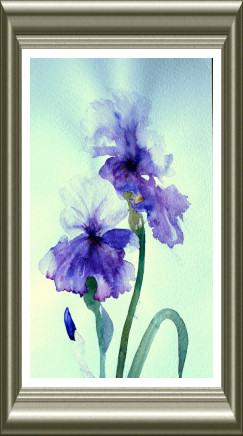 Aquarelle 2006 - Iris bleus (Emile Wouters)